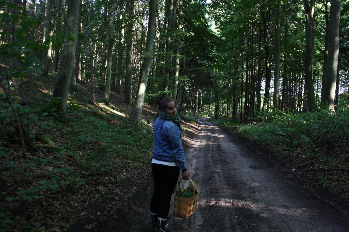 Marie i skoven