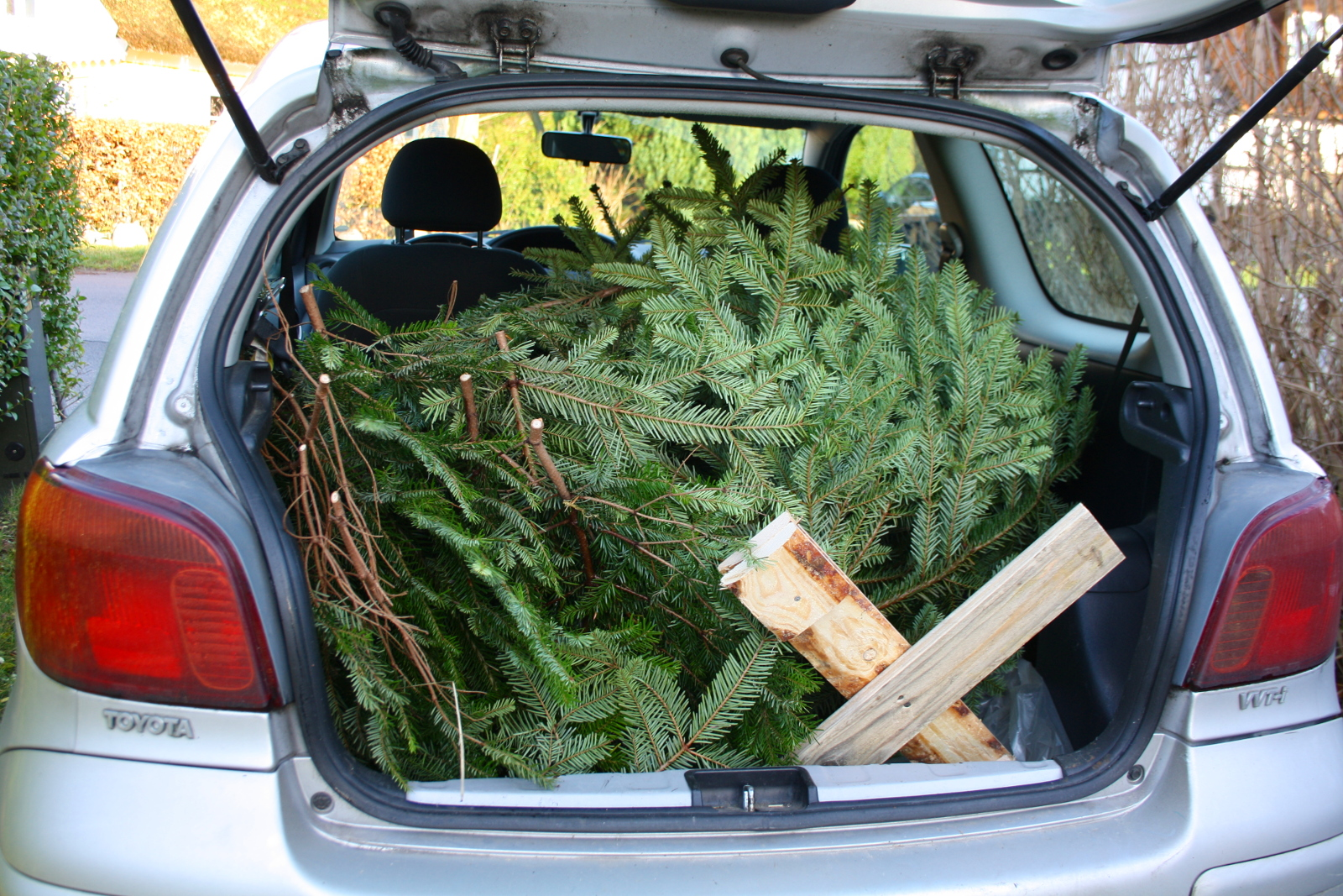 Juletræ i bil